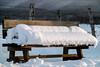 Practicas Composición, medición fotografía invernal