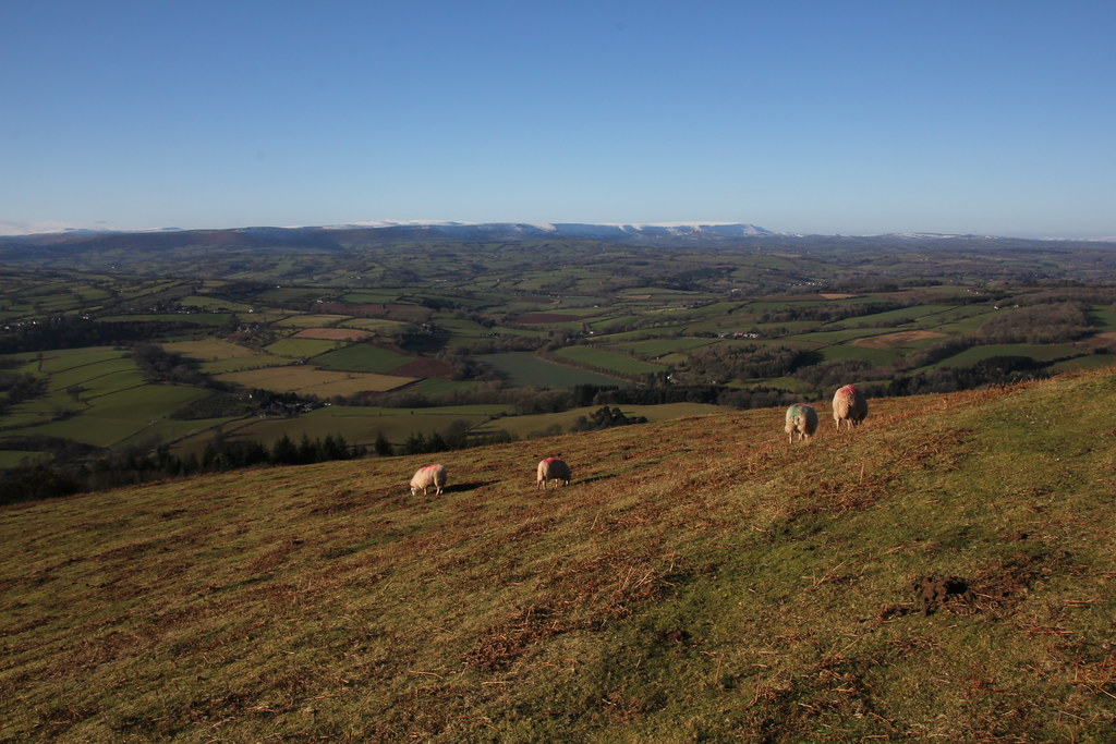 Black Mountains, Forest of Dean, garway hill, sugar loaf