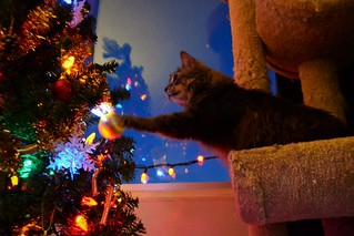 Playing with Decorations!