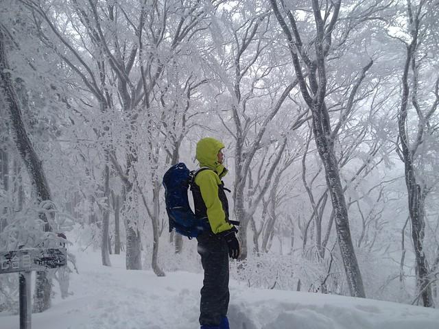 綿向山 七合目 樹氷