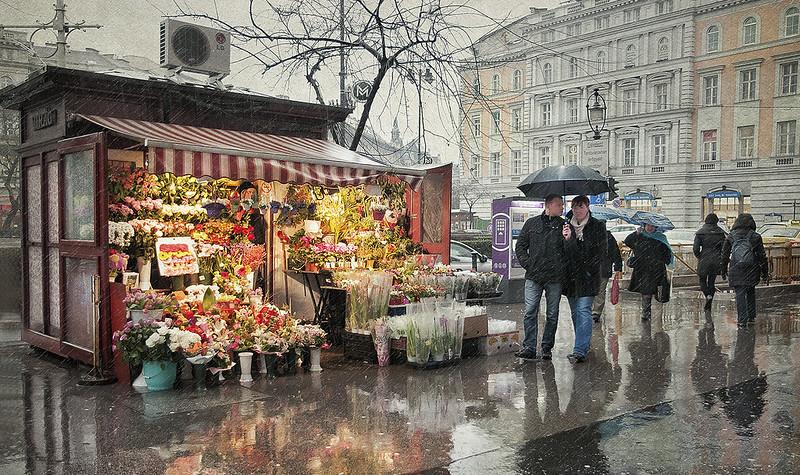 La florista bajo la lluvia