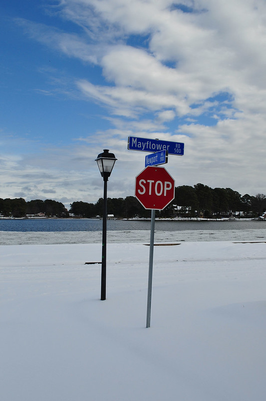 Newport (1)