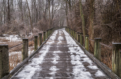 Boardwalk on the Mount Vernon Trail by Geoff Livingston