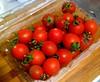 Tainan tomatoes