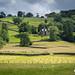 Near Sawrey Landscape, Lake District by Bobrad