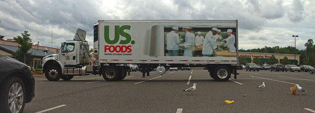 Seagulls and US Foods Truck in Trader Joe's parking lot on Rt. 1 (2016)