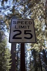 Reduce speed !