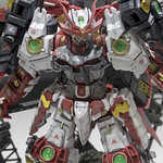 GBWC2014_World_representative_exhibitions-209