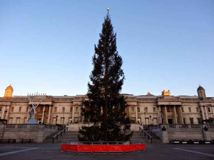 Christmas-Tree-Trafalgar-Square