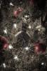 Christmas Tree-2