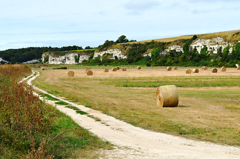 Hay in the Dordogne, France