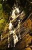 Kiliyur Water Falls | Yercaud | 15-11-2014