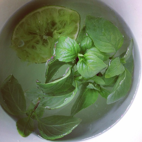 Basil- lime deliciousness