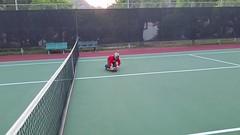 sport venue, individual sports, tennis court, tennis, sports, ball game, racquet sport,