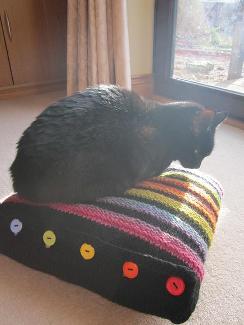Wurmy rainbow cushion (14)