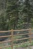 TaosHikersJuly16-2014  :  DSC_0866_2