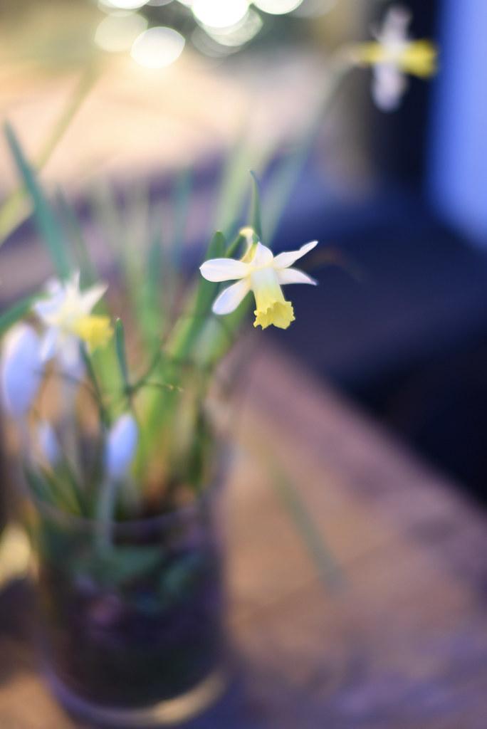 A-blommor