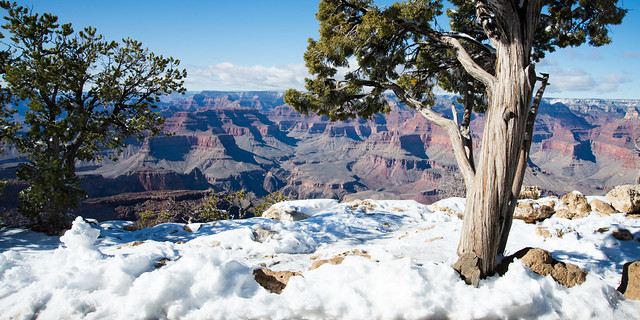 Grand Canyon Yavapai Point in Snow