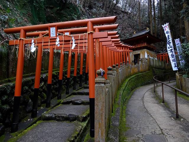 Ichijoji 2-22-1515
