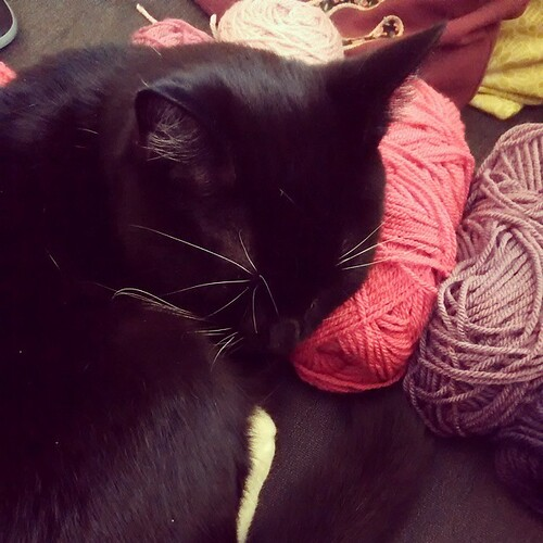 No moar crochet for you hooman
