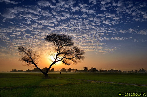 pakistan tree colors clouds sunrise landscape nikon flickr punjab d800 abid photorota