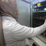 Hücre Kültürü Laboratuvarı 7