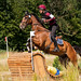 Eventing Emmeloord 2016, Cross CIC