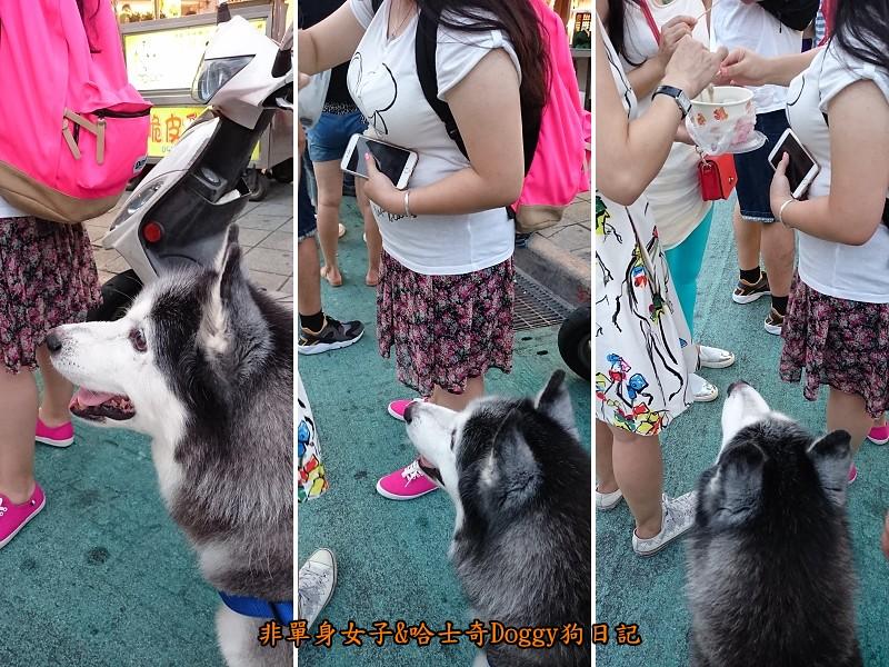 Doggy歡迎光臨07