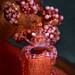 Soft Coral Porcelain Crab (SIZE: to 1 cm) by Alfonso Exposito