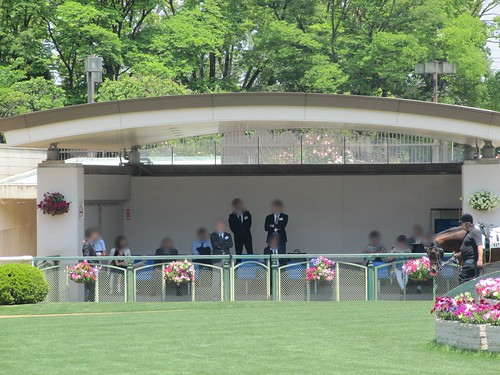 京都競馬場パドックの馬主スペース