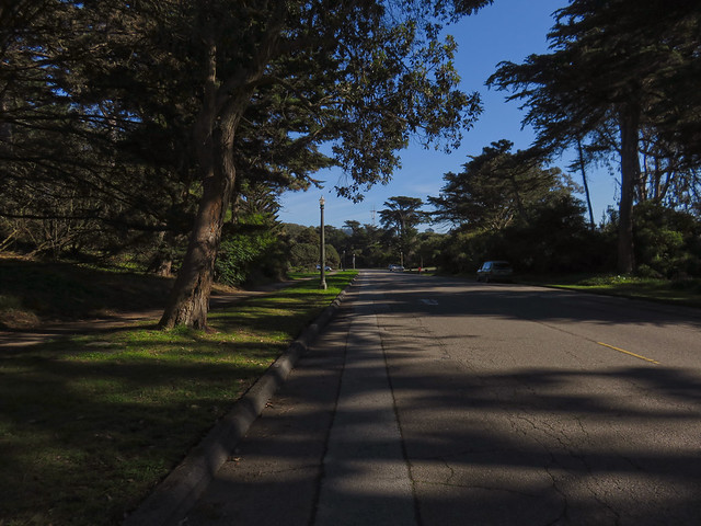Martin Luther King Drive; Golden Gate Park, San Francisco (2014)