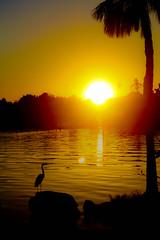 Castaway Point Park Sunset