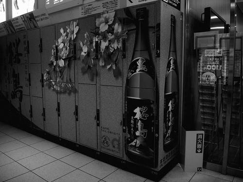 Kagoshima on DEC 19, 2014 (13)