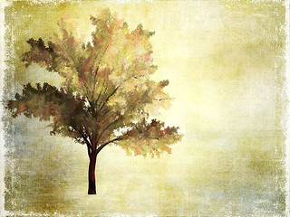 Image of Tree as taken into Corel Painter