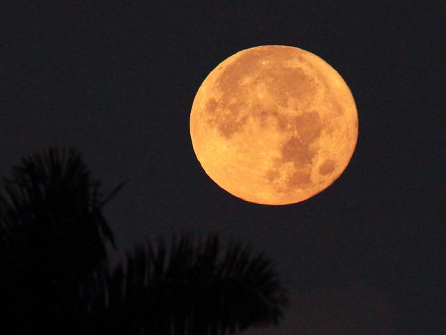 Wolf Moon setting 20150105