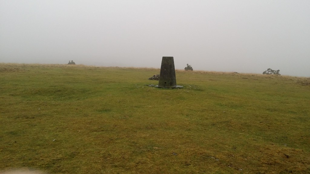 The mighty summit of Gibbet Hill seemingly ringed by a Henge of Gorse #dartmoor #sh