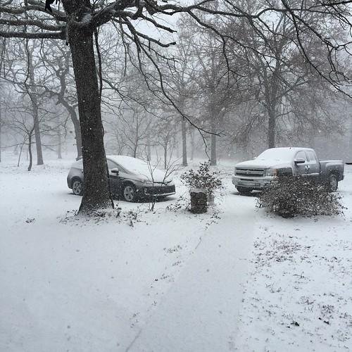 Snowpacolypse 2015