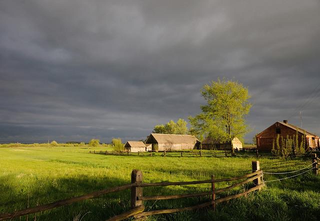 Polish countryside