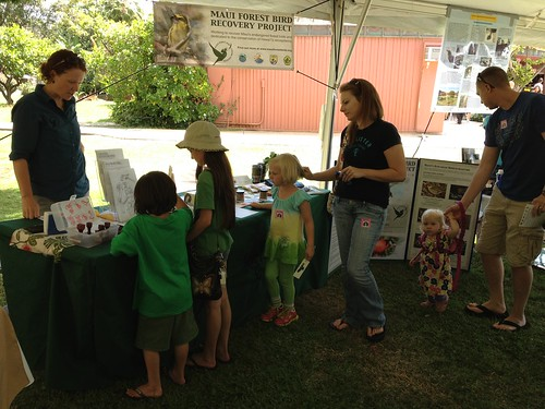 Educating the public about Maui's native forest birds.