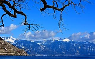 Lavaux et région de Vevey - Montreux
