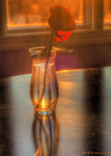 light shadow glass sunrise bottle nikon unitedstates northcarolina shelby lightroom
