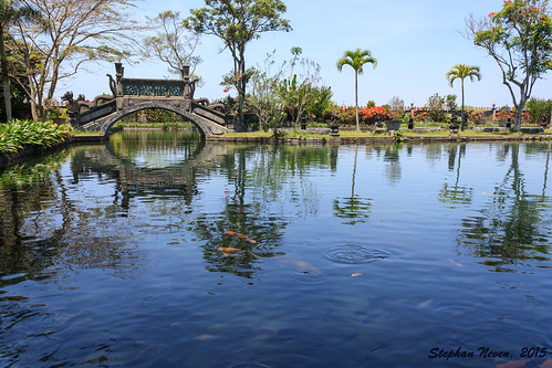 bridge bali fish water beautiful garden indonesia religious royal palace lush hindu karangasem tirtagangga