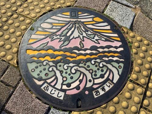 富士市 カラー