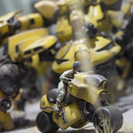 GBWC2014_World_representative_exhibitions-29