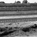 Uitzicht op Markermeer - 2 pics by steffer7