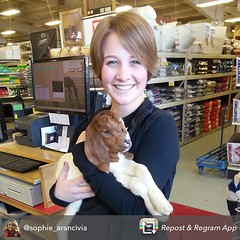 Our employees love all the animals that visit this time of year. Thank you @sophie_arancivia for sharing.