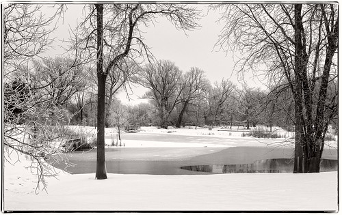 winter bw snow landscape carletonplace