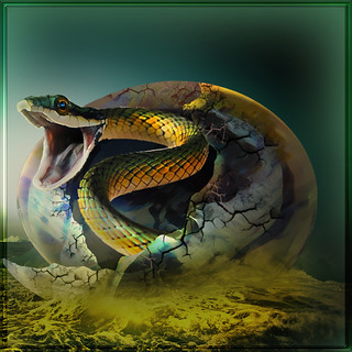 The egg of the serpent