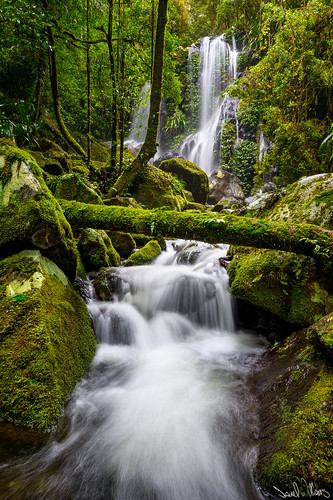waterfall qld oreillys lamington goldcoast lamingtonnationalpark hinterland