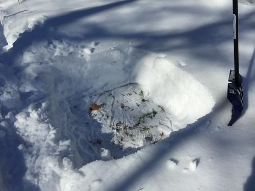 snowshovelling garden IMG_0407